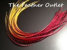 Lot 12 Grizzly Feathers Hair Extensions long thin striped Real Tie Dye FIRE