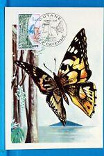 FRANCE CPA   Carte Postale Maximum PAPILLONS DE GUYANE  Yt 1865 C
