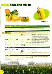 Clause Seeds Pepper Yellow, Fulgor f1 B.X 1000 Seeds