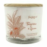 Scentsational Coconut & Soy Wax Blend 3 Wick Large 26oz Candle - Tangerine Guava