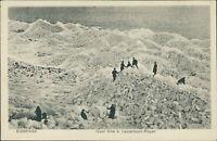 Ansichtskarte Eisberge Insel Vilm b. Lauterbach Rügen (Nr.9372)