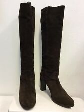 Buy Dolcis Suede Knee High Stiefel Stiefel High for Damens     81dfac
