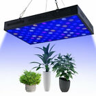 Indoor Plants Light Seed Grow System Full Spectrum Grow Light BE picture