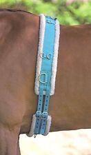 Shires Nylon Lunge Roller Soft Fleece Padding Adjustable Lunging Training