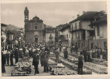 CANALE D'ALBA  PIEMONETE MERCATO DELLE PESCHE TORINO  RARA PIEMONTE