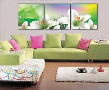 3Panels Modern Abstract Painting Canvas Print Combination Art Picture PT634S