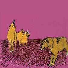 NDF (Bruno pronsato & Benj of BENOIT & Sergio) - Cruel is the color VINYL LP NEUF