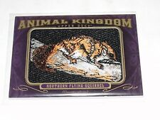 2012 Goodwin Champions Animal Kingdom AK-133 NORTHERN FLYING SQUIRREL Rare Patch