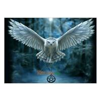 Flying Eagle 5D Diamond Painting Embroidery DIY Cross Stitch Craft Home Decor