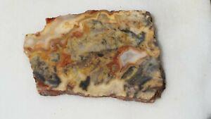 Crazy lace agate slab mineral specimen collection lapidary rough - HL142