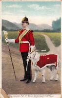 CPA ANGLETERRE ENGLAND regimental pet 1st welsh regiment 41st foot
