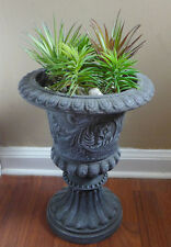 Set of 5 Artificial Succulents Plants Two Colors Agave And Mini Pine Trees