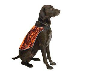 Hundeweste , Signalweste, Hunde- Signalwendeweste , Hunde - Jagdweste- Belfast