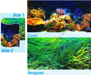 """TOP FIN Aquarium Background Ocean CORAL Reef SEAGRASS Double sided 24""""x48"""""""