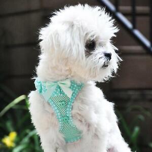 American River Choke-Free Dog Harness Teal & White Polka Dots  -  XS-S-M-L-XL