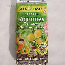Terreau Agrumes et plantes méditerranéennes 6 litres Algoflash