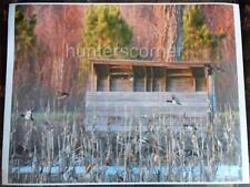 Ducks Flying in Front Of Duck Blind,16x20 Ken Goss signed photograph