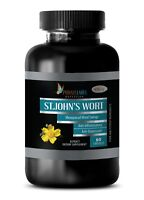 St. John's Wort Extract - Anxiety, Depression, Mood Swings (1 Bottle)