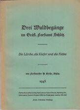 (Forstwissenschaft) Drei Waldbegänge im Gräfl. Forstamt Schlitz   1948