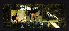 DJIBOUTI -2011.ANIMALS. Several breeds HORSES .BLOCK  MNH**.