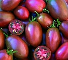 "100 x Ukrainian Purple Tomato ""Holy Fruit"" Seeds Rare Exotic Salad Vegetable"