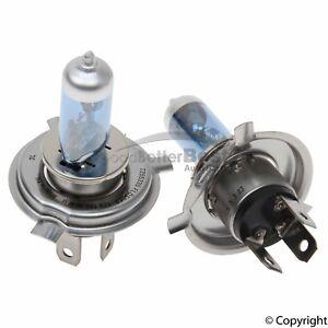 One New Flosser Multi Purpose Light Bulb 7255335 for Porsche 912