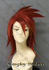 Tales of Abyss Luke fon Fabre Cosplay Wig_commission139