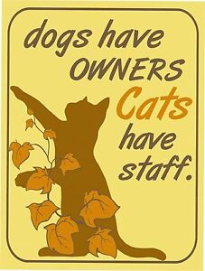 Vintage Retro Style Dog Owners Cats Have Staff Funny Metal Wall Door Sign 9x12
