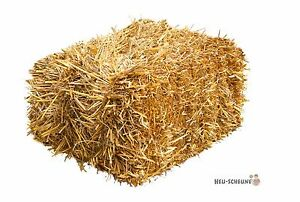 Stroh 15kg Heu-Scheune® Strohballen Einstreu Kaninchen Meerschweinchen Deko