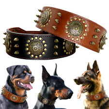 Spiked Studded Wide Leather Dog Collar Adjustable for Large Rottweiler Pitbull