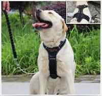Large PU Leather / PES Dog Harness Adjustable Support Comfy Pet Pulling Control