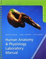 Human Anatomy & Physiology Laboratory Manual, Main Version, 10th Edition