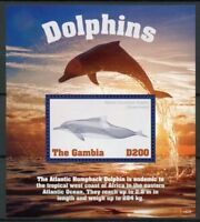Gambia 2018 MNH Dolphins Atlantic Humpback Dolphin 1v S/S Marine Animals Stamps