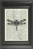 ORIGINAL Art Print - Dragonfly Printed on Vintage Dictionary Page Wall Art 803D