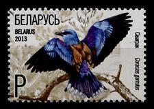 Vögel. Blauracke. 1W. Weißrußland 2013