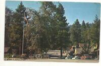 Postcard CA Idyllwild California San Jacinto Mountains