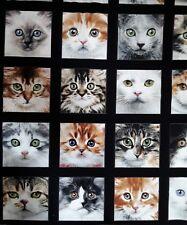 """New 100% Cotton 44"""", Elizabeth's Studio, """"Adorable Pets"""", Cats Block Pattern"""