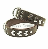 BROWN LEATHER DOG COLLAR SOFT PADDED STAFFY TERRIER ROTTWEILER BULLDOG MASTIFF