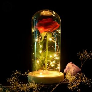 Beauty and the Beast Enchanted Led Rose In Glass Dome LED Lamp Christmas Gift
