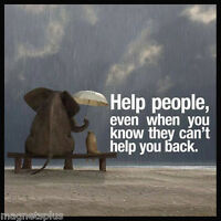 HUMOROUS ELEPHANT CAT PIC HELP PEOPLE FRIDGE LOCKER MAGNET