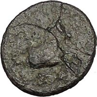Kolophon in Ionia 360BC Apollo and Horse on Authentic Ancient Greek Coin  i51862