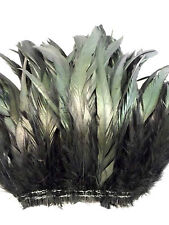 """50+ BLACK IRIDESCENT ROOSTER COQUE TAILS FEATHER 10""""-12""""L"""