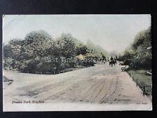 Sussex BRIGHTON Preston Park c1904 Postcard by J.W.S.