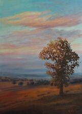 Original Australian Landscape Oil Painting of sunset countryside tree