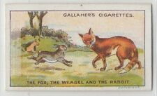 The Fox, The Weasel And The Rabbit Aesop's Fable Moral Story 1920s Trade Card