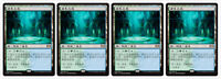 4 Chinese Breeding Pool Ravnica Allegiance Magic the Gathering MTG Lands MINT