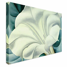White Floral Flower Canvas Wall Art Picture Print