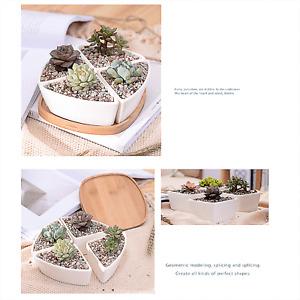 Creative Ceramic Pots Bamboo Drag Flower Planter Home Office Study Garden Decor