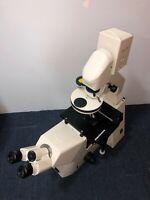 Zeiss Axiovert 200 Microscope