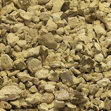 Peony raíz Paeonia peregrina Molino hierba seca, Hierbas Desintoxicación curación 50g